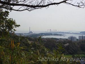 20130323hakkakudo2_gf