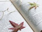 Book_autmun01