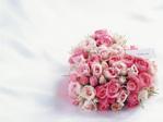 Flower_rosehanatabapink